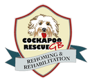 Cockapoo Rescue GB